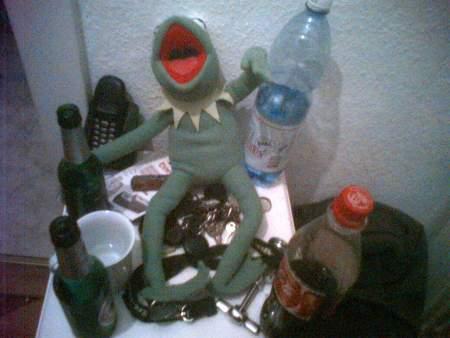 Kermit die alte Partyschlampe